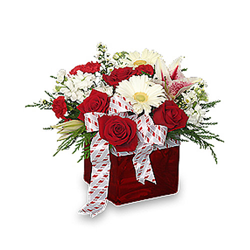 Christmas Ribbon & Roses Bouquet
