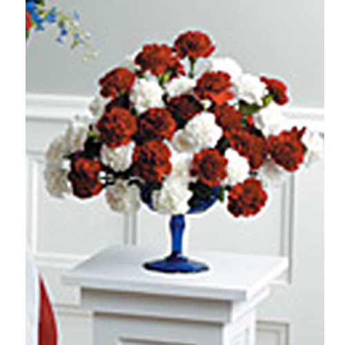 Red & White Carnation Arrangement