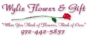 Wylie Flower & Gift Shop is your Local Family owned Florist with same day delivery to Wylie, Sachse, Murphy, Plano, Richardson, Garland, Dallas, Rowlett, Lavon, Rockwall, Allen, Fairview, Parker, St. Paul, Lucas, Copeville, Nevada, Josephine, Community. Preferred Wylie Florist, Murphy Florist, Sachse Florist, Plano Florist, Richardson Florist, Garland Florist, Lavon Florist, Nevada Florist, Allen Florist, Rowlett Florist, Dallas Florist.